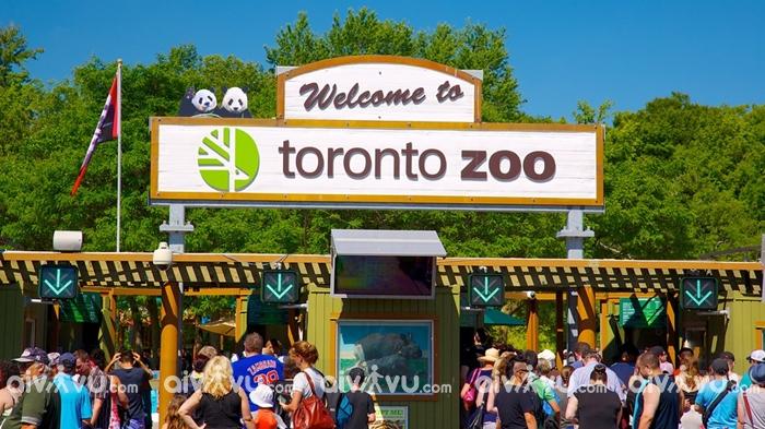 Sở thú Toronto, Canada - Sở thú lớn nhất thế giới