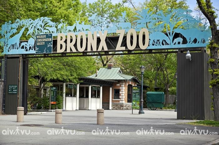 Sở thú Bronx, Mỹ - Sở thú lớn nhất thế giới