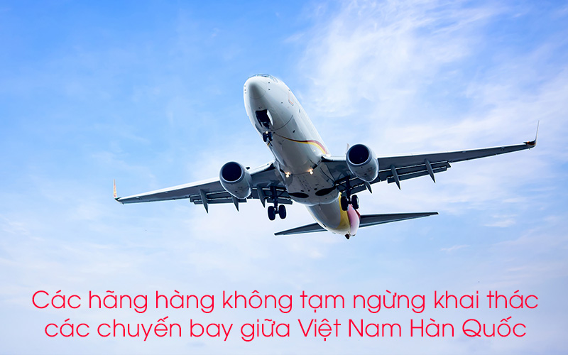 Các hãng hàng không tạm ngừng khai thác chuyến bay giữa Việt Nam Hàn Quốc