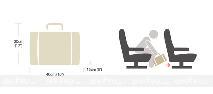 Hành lý xách tay mang lên máy bay phải được xếp gọn dưới ghế của ghế ngồi