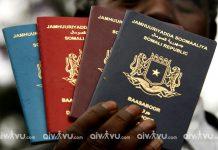 Kinh nghiệm phỏng vấn xin visa kết hôn Nam Phi chi tiết