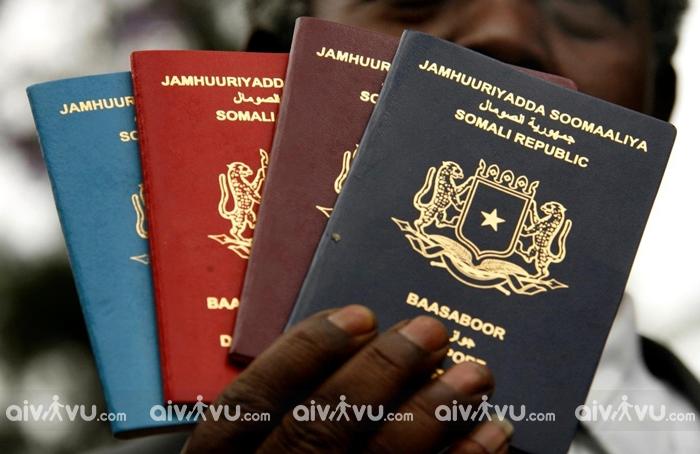 Tại sao nên chọn làm visa trọn gói tại Aivivu?