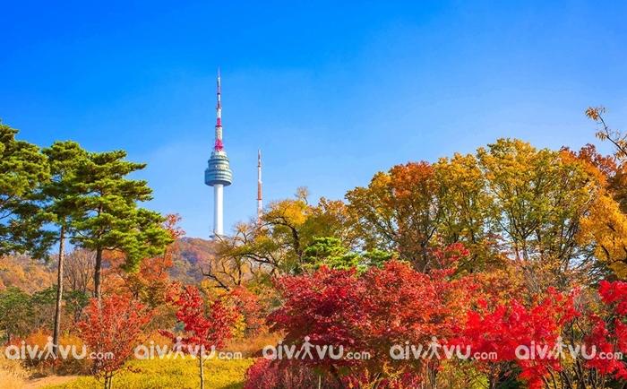 Cẩm nang du lịch Hàn Quốc tháng 9 đi đâu ăn gì?