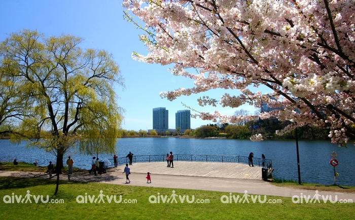 Du lịch Canada mùa nào đẹp nhất?