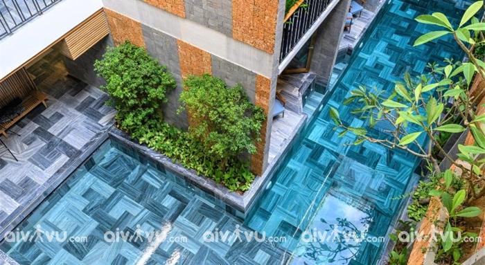 Miễn phí sử dụng hồ bơi tại khách sạn Daisy Boutique
