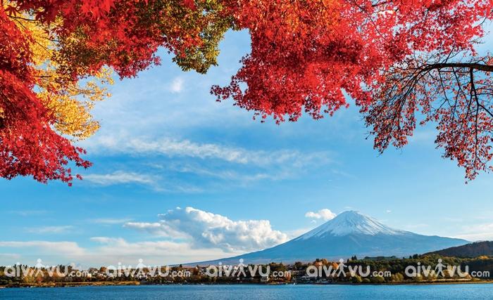 Du lịch Nhật Bản đi đâu?