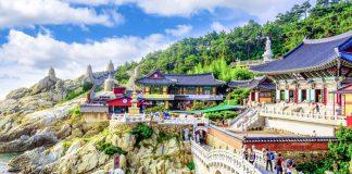 Vì sao nên đi du lịch Hàn Quốc hè 2020