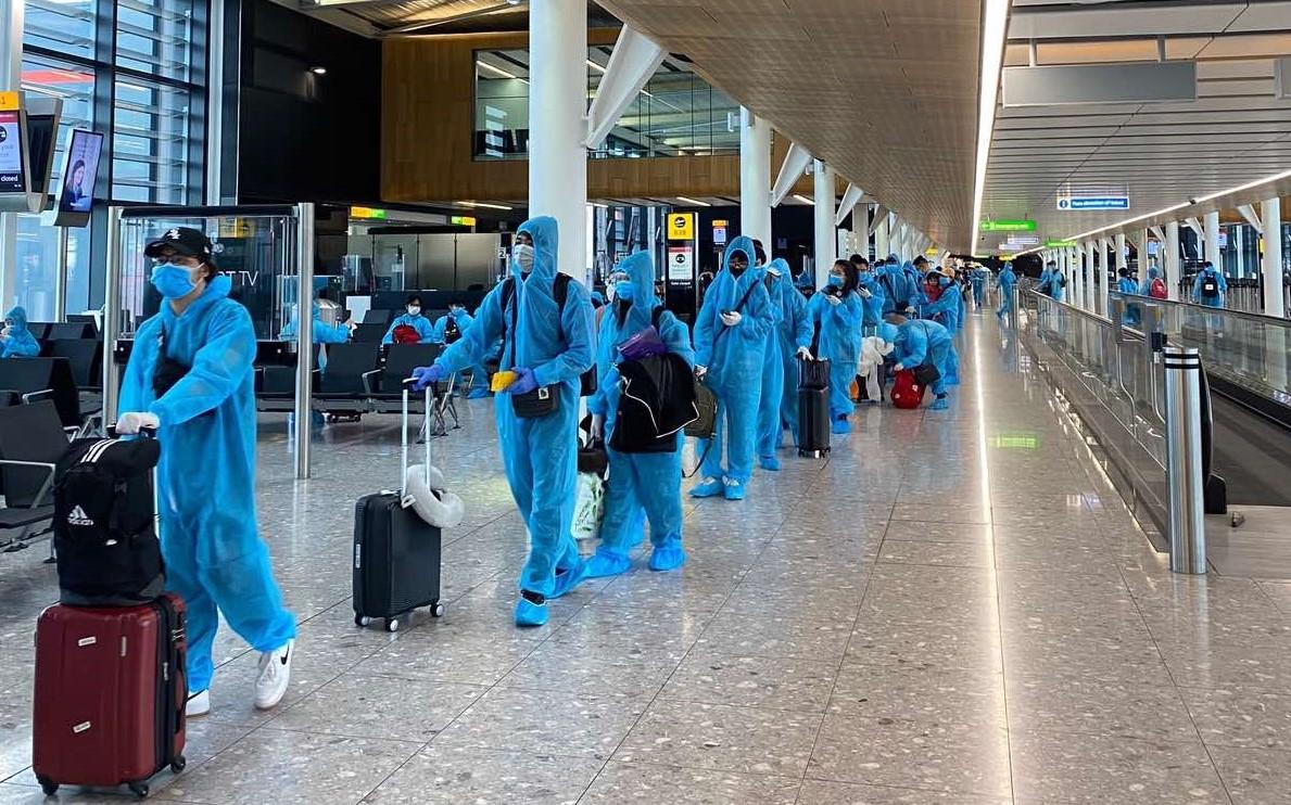 Lưu ý tránh bị lừa khi đăng ký chuyến bay về nước cho công dân Việt Nam