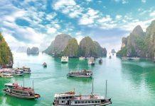 Combo du lịch Hạ Long 2 ngày 1 đêm chỉ từ 2.350.000 VND