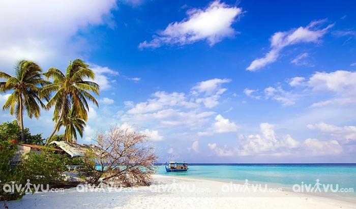 Bãi sao bãi biển quyến rũ nhất Phú Quốc