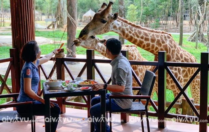 Trải nghiệm Safari Phú Quốc ăn gì?