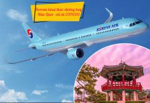 Korean Air khuyến mãi vé máy bay đi Hàn Quốc chỉ từ 270 USD
