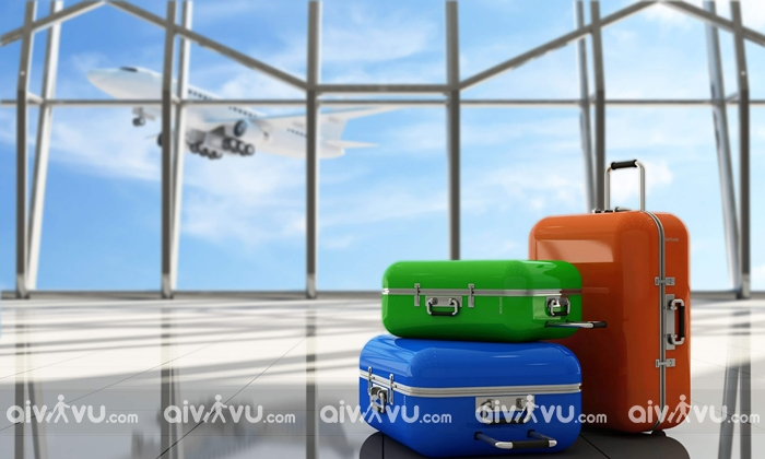 Quy định hành lý ký gửi Etihad Airways mới chi tiết nhất