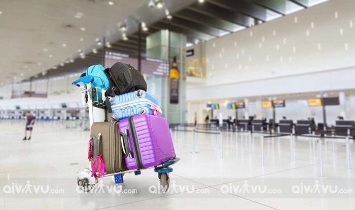 Quy định hành lý ký gửi dành cho khách hàng thành viên Etihad Airways