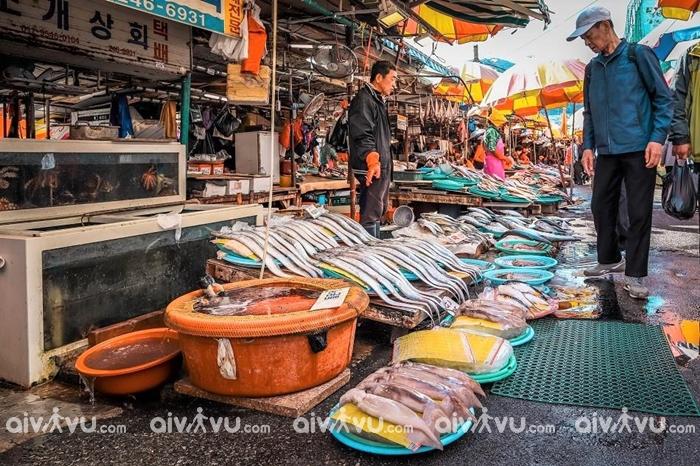 Ghé thăm chợ hải sản lớn nhất Đông Bắc Á