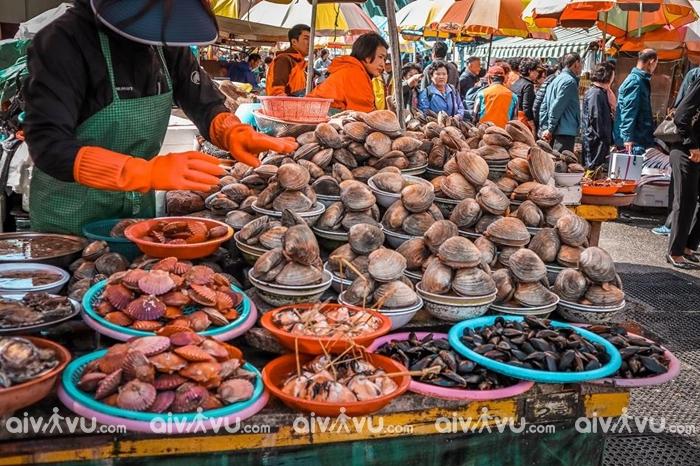 Giới thiệu về chợ hải sản Jagalchi Busan Hàn Quốc