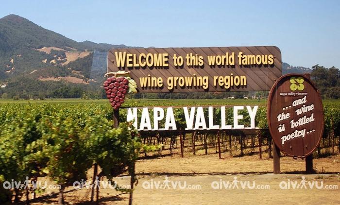 Thung lũng Napa là điểm đến dành cho du khách yêu thích rượu vang