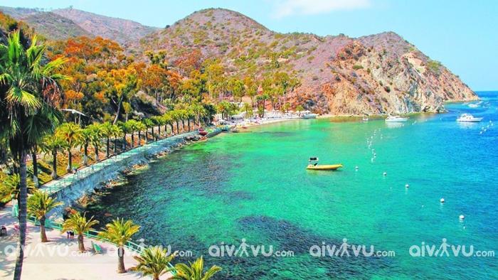 Đảo Catalina điểm đến được du khách yêu thích
