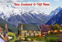 Vé máy bay từ New Zealand về Việt Nam giá rẻ
