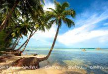 Đi du lịch Phú Quốc mùa nào đẹp và tiết kiệm chi phí nhất?