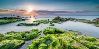Bãi Rạn Nam Ô Đà Nẵng - Điểm du lịch mới siêu chất không phải ai cũng biết