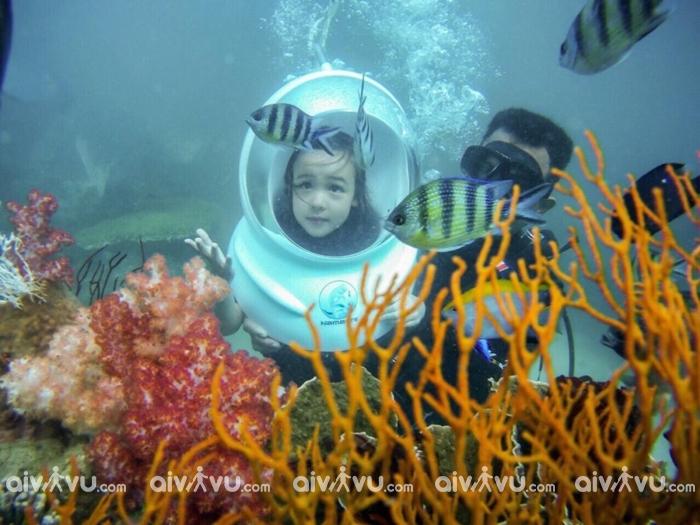 Trải nghiệm đi bộ dưới biển Phú Quốc – Lặn ngắm san hô