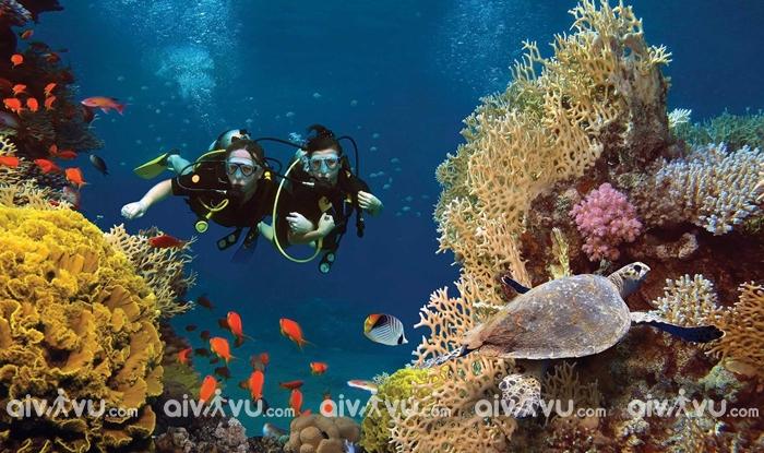 Thời điểm thích hợp đến Nha Trang lặn biển