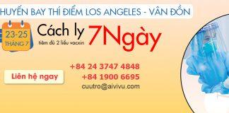 Mở bán vé máy bay từ Mỹ về Việt Nam cách ly 7 ngày