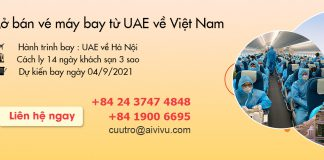 Mở bán vé máy bay từ Tiểu Vương Quốc Ả Rập (UAE) về Việt Nam