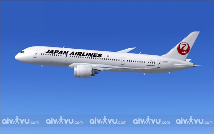 Japan Airlines có cho phép đổi tên trên vé máy bay không?