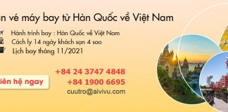 Mở bán vé máy bay từ Hàn Quốc về Việt Nam
