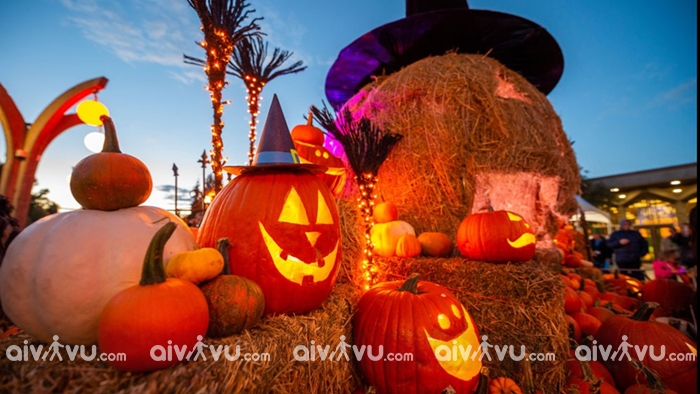 Điểm đến thú vị trong ngày Halloween tại Mỹ