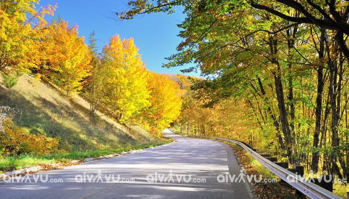 Con đường cao tốc 101, Oregon con đường mùa thu đẹp nhất nước Mỹ