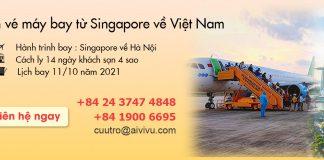 Mở bán vé máy bay từ Singapore về Việt Nam