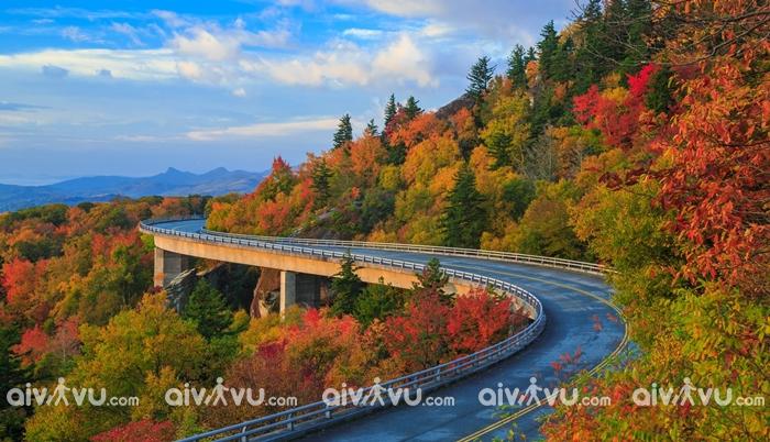 Đại lộ Blue Riedge con đường mùa thu đẹp nhất nước Mỹ