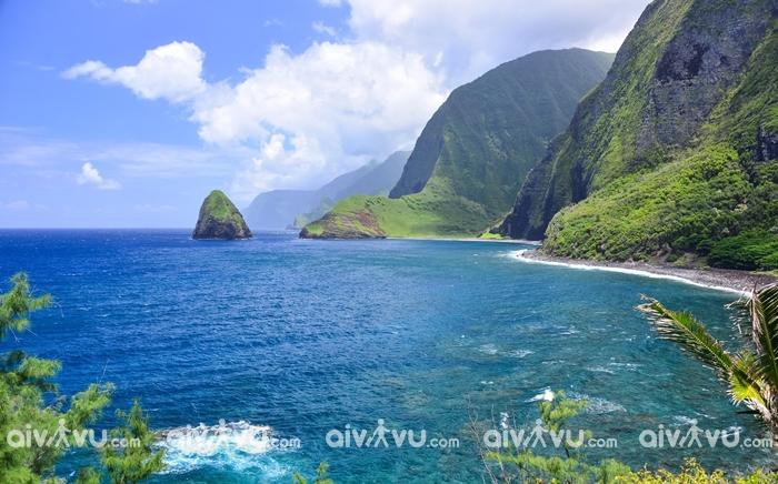 Molokai, Hawaii điểm đến được yêu thích vào mùa đông