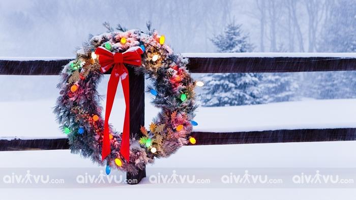 Vòng lá mùa vọng biểu tượng của mùa Giáng Sinh